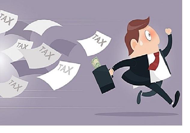 Công ty mới thành lập cần nộp thuế gì