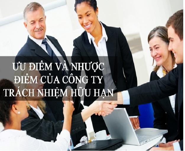 Những ưu điểm và nhược điểm của Công ty TNHH một thành viên và Công ty TNHH hai thành viên trở lên