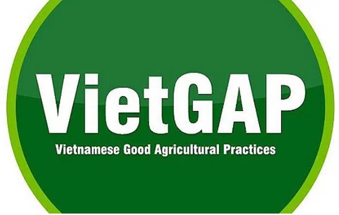 XIN GIẤY CHỨNG NHẬN VietGAP